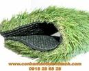Tp. Hồ Chí Minh: Cỏ sân vườn TT-SVC340 CL1684439