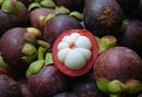 Tp. Hồ Chí Minh: Trái cây sạch -Măng cụt CL1686339