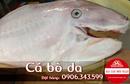 Tp. Hồ Chí Minh: Cá bò da thịt thơm ngon CL1700100