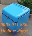 Tp. Hồ Chí Minh: Bán thùng chở hàng sau xe máy: Thùng chở hàng sau xe máy composite theo yêu cầu CL1687121