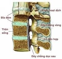Bệnh đau lưng ở bên trái có khó thở là biểu hiện của bệnh gì?