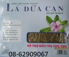 Bán Lá Dừa CẠn, chất lượng-=- Hỗ trợ điều trị bệnh ung thư tốt