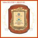 Tp. Hồ Chí Minh: Sản xuất kỷ niệm chương gỗ đồng, bằng khen, bằng chứng nhận gỗ đồng CL1062561P10