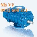 Tp. Hồ Chí Minh: Máy thổi khí Robuschi - Đại lý phân phối chính thức tại Việt Nam CL1629688