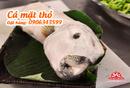 Tp. Hồ Chí Minh: Cá thỏ biển quý hiếm, hàng tươi ngon CL1700100