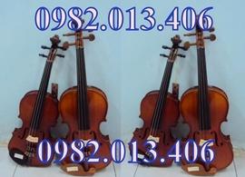 Bán đàn violon màu sắc đa dạng giá re giao hàng toàn quốc