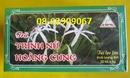 Tp. Hồ Chí Minh: TRinh Nữ Hoàng Cung- Sản phẩmto61t, chữa tuyến tiền liệt, U xơ, U nang, rẻ CL1694429