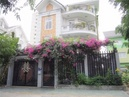 Tp. Hồ Chí Minh: y!!^! Bán Biệt Thự Cao Cấp Khu Trung Sơn. DT: 10x20m, Giá 16. 5 Tỷ CL1698729