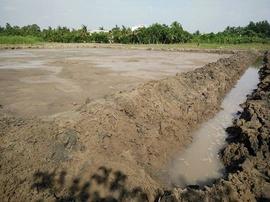 -Vị trí : kế bên hồ bơi Hùng Quân , đường Hoàng Quốc Việt ,phường An Bình quận N
