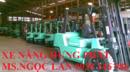 Bình Thuận: Cho thuê xe nâng hàng ngắn và dài hạn giá rẻ toàn quốc 0938246986 CL1700853