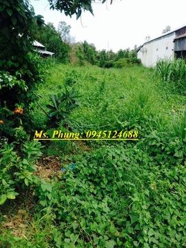 bán đất mặt đường ở huyện phước long, bán đất mặt bằng kinh doanh, bán đất.
