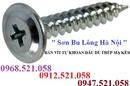 Tp. Hà Nội: 0968. 521. 058 Kim khí Thanh Sơn bán vít tự khoan thép & INOX ở Hà Nội rẻ CL1699646