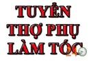 Tp. Hồ Chí Minh: Tuyển Thợ Làm Tóc Có Tay Nghề Quận 8 CL1701124
