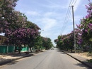 Quảng Nam: w*** Mở bán GĐ 2 dự án Khu đô thị An Thịnh giá rẻ, ngay khu công nghiệp không CL1700076