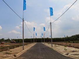 Bán Đất Giá 240 Triệu/ 110m2 Trên Đường Trường Sơn Vào Sân Bay Long Thành 2km