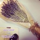 Tp. Hồ Chí Minh: Bán sỉ và lẻ Hoa lavender khô nhập khẩu tại TPHCM giá rẻ CL1700641
