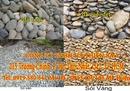 Tp. Hồ Chí Minh: Phân phối Đá cuội vàng, đá cuội sân vườn Vị Thanh CL1700955