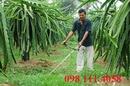 Tp. Hà Nội: Hạ giá ngay khi mua máy cắt cỏ GX25, GX35 tại đây CL1701427