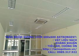 Ốp trần cho nhà mái tôn, Trần nhôm Astrongest, Có nên ốp Trần gỗ, Trần thạch cao