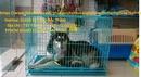Tp. Hồ Chí Minh: Lồng sắt cho chó mèo CL1701507