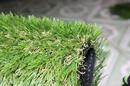 Tp. Hồ Chí Minh: cỏ nhân tạo trang trí sân vườn CAT236_239