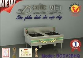 Chuyên cung cấp các loại Bếp gas Đức Việt