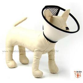 Vòng chụp bảo vệ cho chó mèo