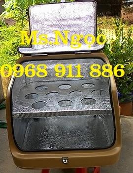 Thùng giữ lạnh, thùng giữ nhiệt giá rẻ, phân phối thùng chở hàng