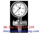 Tp. Hồ Chí Minh: Đồng hồ áp suất P7318AJKLB026D0 Wise Control Vietnam STC Vietnam CL1703411