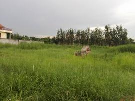 Bán đất nền quận 12, dự án đất ven sông Sài Gòn duy nhất khu vực