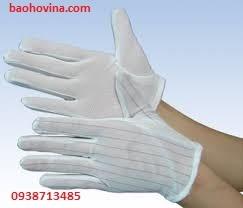 Găng tay chống tĩnh điện-VN, 0938713485 cung cấp găng tay các loại giá rẻ!
