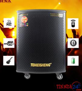 Loa di động Temeisheng GD 12-03 - loa di động hát karaoke công suất lớn