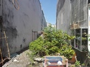 Tp. Hồ Chí Minh: Đất Bán Đường Thạnh Xuân 38, P. Thạnh xuân, Quận 12 CL1700499