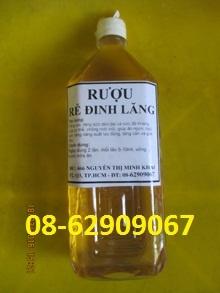 Rượu thuốc giúp tuần hoàn máu tốt, ngừa tai biến, đột quỵ-Rượu Đinh Lăng
