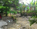 Tp. Hồ Chí Minh: bán đất tại đường đông hưng thuận 11 quận 12 90m2 CL1703415