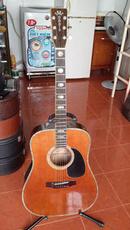 Tp. Hồ Chí Minh: Bán guitar Nhật Morris W 60 CAT236