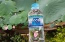 """Tp. Hồ Chí Minh: Nước bạn đang sử dụng liệu có thật sự """"Sạch"""" CL1702357"""