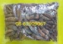 Tp. Hồ Chí Minh: Chuối hột rừng- Chữa nhức mỏi, Tán sỏi, lợi tiểu, kết quả tốt CL1703393