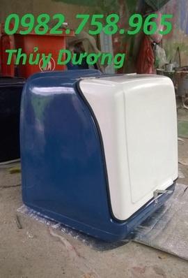 thung cho hang, thung cach nhiet, thung cho hang sau xe may, thung hang tiep thi, th