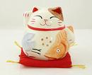 Chọn mèo phong thủy cho năm Tân Mão NEWS3053