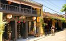 Du lịch mùa Vu Lan cùng Saigontourist NEWS6894