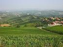 Viếng thăm thành phố của rượu vang RSN21200
