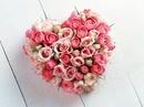 Tour du lịch cho ngày Valentine RSN3375