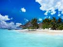 Tour du lịch nội địa và quốc tế giá ưu đãi NEWS15313