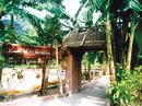 Dấu xưa hồn thu thảo ở làng Việt cổ NEWS15111