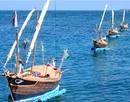 Tuần lễ văn hóa biển đảo tri ân Hải đội Hoàng Sa NEWS15111