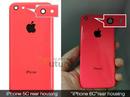 Apple chưa chắc ra mắt iPhone 6C năm nay vì thất bại của 5C NEWS22705