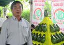 Kiếm tiền tỷ nhờ trồng bơ sáp ở Bình Phước NEWS22710